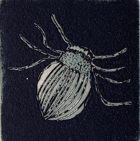 'Beetle', Melissa Cherry