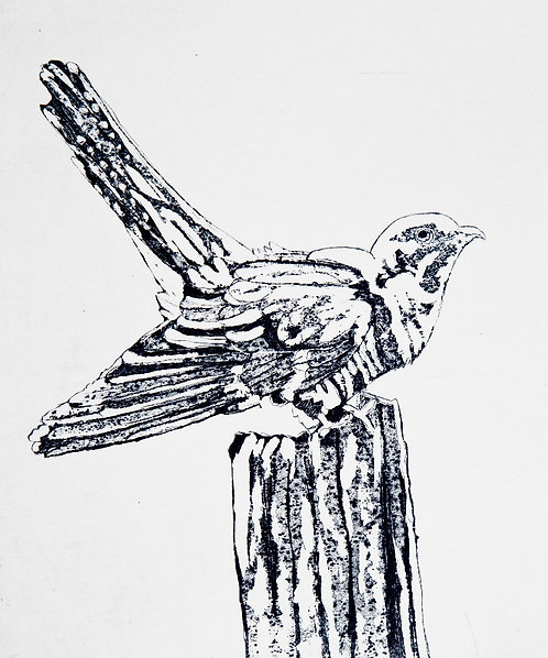 'Cuckoo', MaryMcGrath