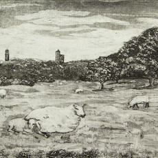 """""""Lazy Afternoon, the Curragh"""", Collagraph, 25 x 32cm, ed of 20,  Eileen Keane"""
