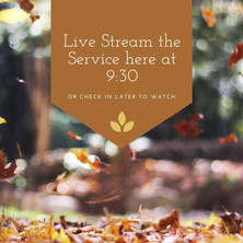 Live Stream Service and Bulletin Downloads for October 24.