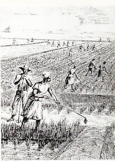 012 slaves in field sketch 001.jpg