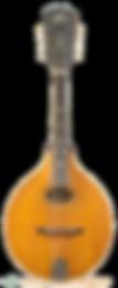 mandolin_edited-1.png