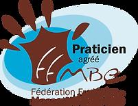 logo-ffmbe-300x231.png
