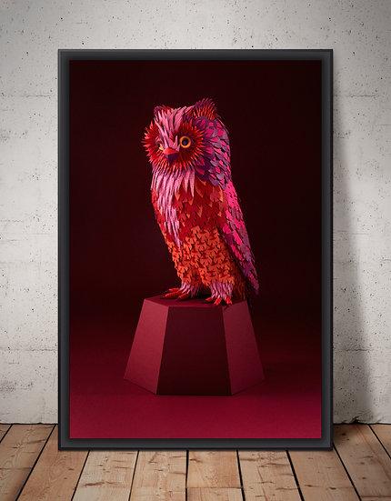 'Museum of Supernatural History' - Owl