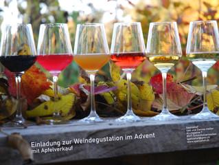 Weindegustation 2020