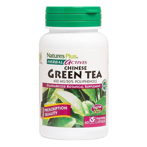 Nature's Plus Chinese Green Tea 400 mg  60 Veg Caps