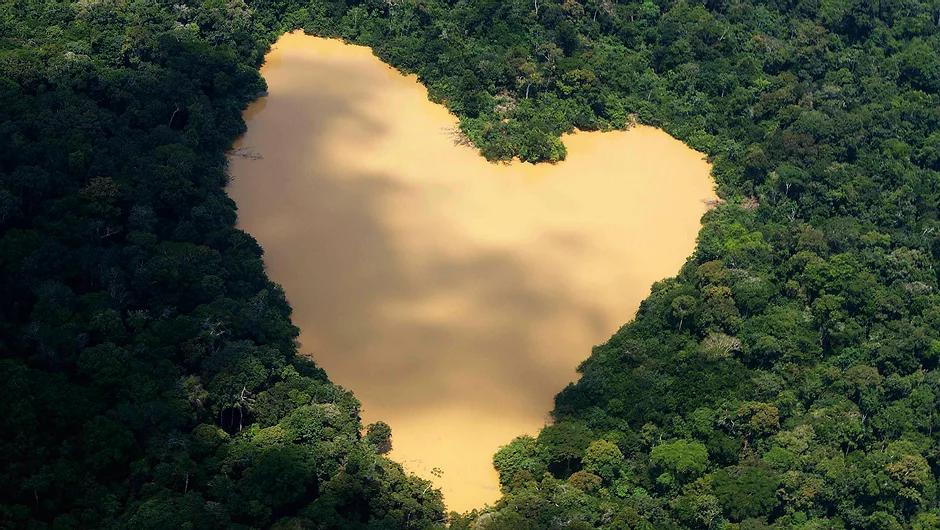 amazonia-floresta-lago_jpg.webp