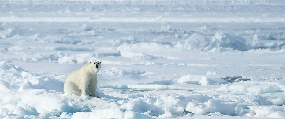 15 Nights Norwegian fjords, Bear Island & Svalbard