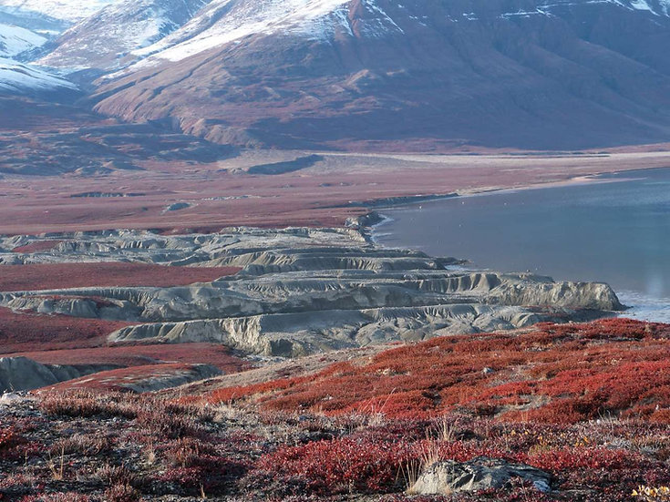 13 Nights Spitsbergen - Northeast Greenland, Aurora Borealis