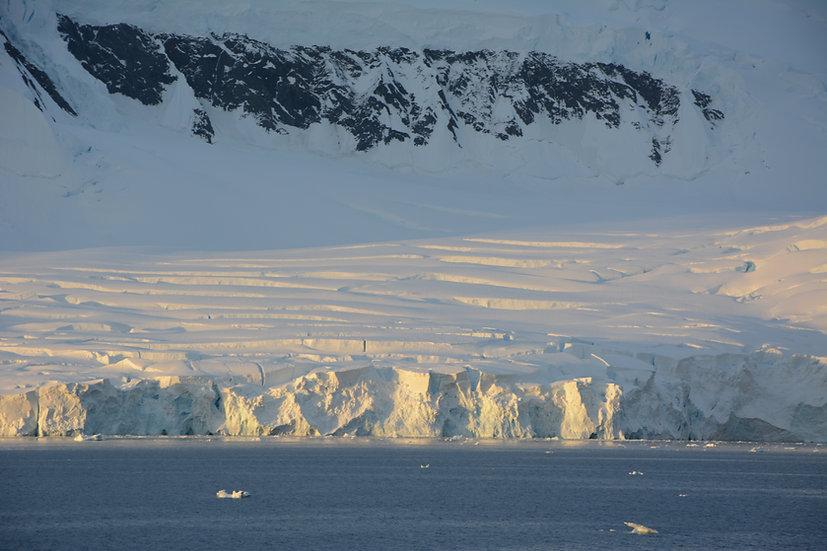 11天南极半岛南舍得兰群岛探险游