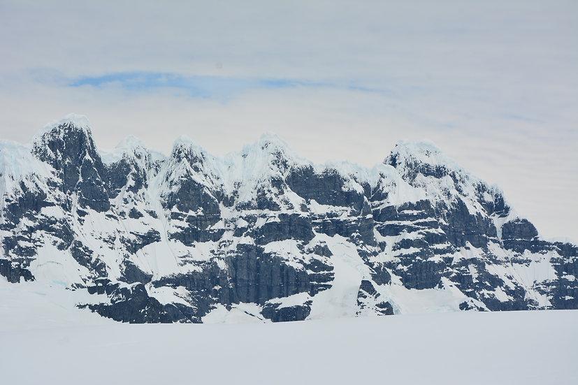 17天南极半岛,南乔治亚和福克兰群岛飞去飞来探险游