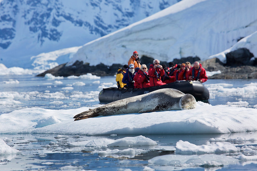 14天南极半岛南极圈探险之游