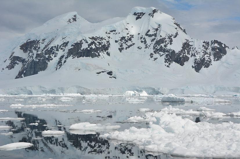 8天飞来飞去南极半岛之旅
