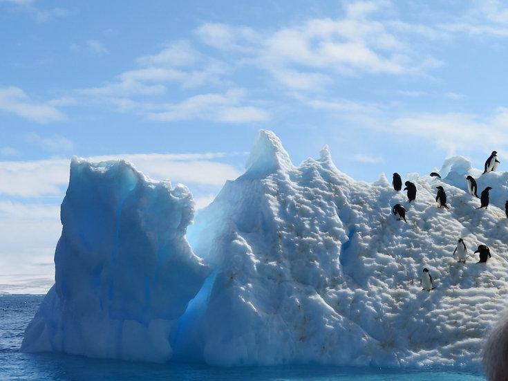 11 Nights Antarctica - Weddell Sea Explorer