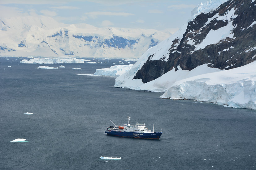 12天南极圈南极半岛探险之旅