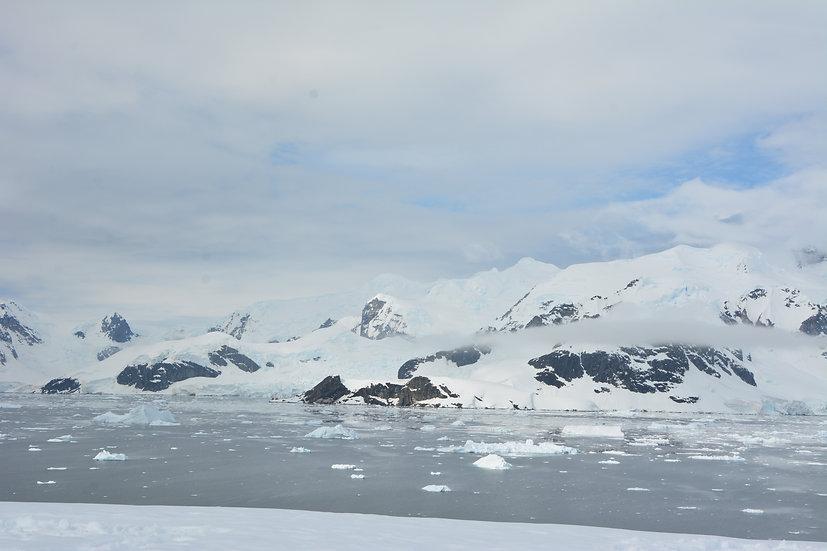 12 Nights Antarctica Classic In Depth