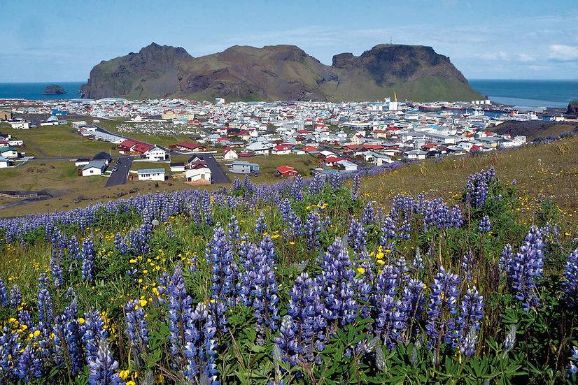 10 Nights Iceland Circumnavigation Expedition