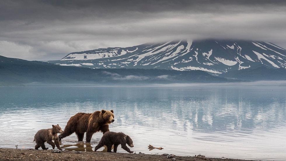 15/17 Nights Kamchatka & Chukotka