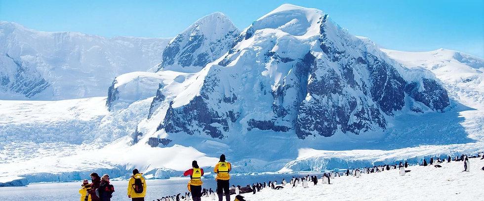 20 Nights Great Penguin Adventure - Falklands, South Georgia & Antarctica