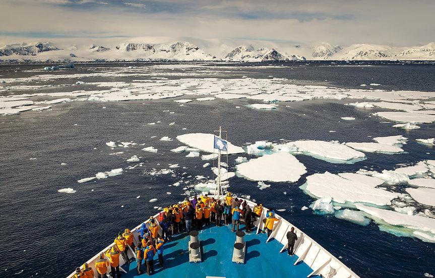 16天南乔治亚群岛和南极半岛探险游