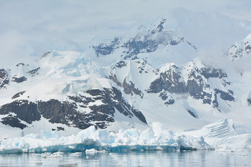 12天飞去飞回南极半岛,威德尔海和福克兰群岛探险游