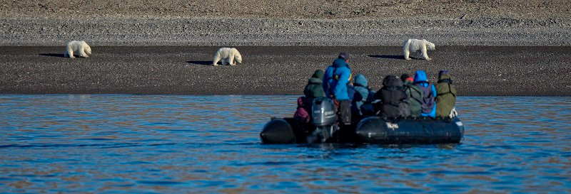 16 Nights The Northwest Passage Adventure