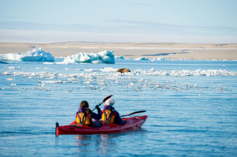 7 Nights North Spitsbergen Basecamp