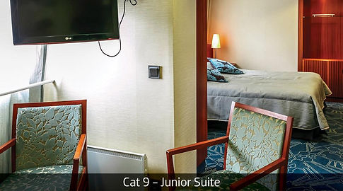 Cat 9 Junior Suite.jpg
