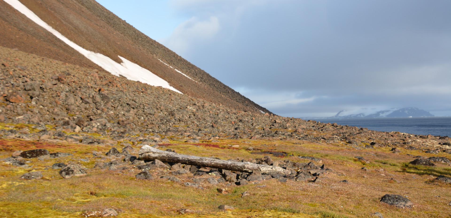 Cape Norway, Jackson Island, Franz Josef Land