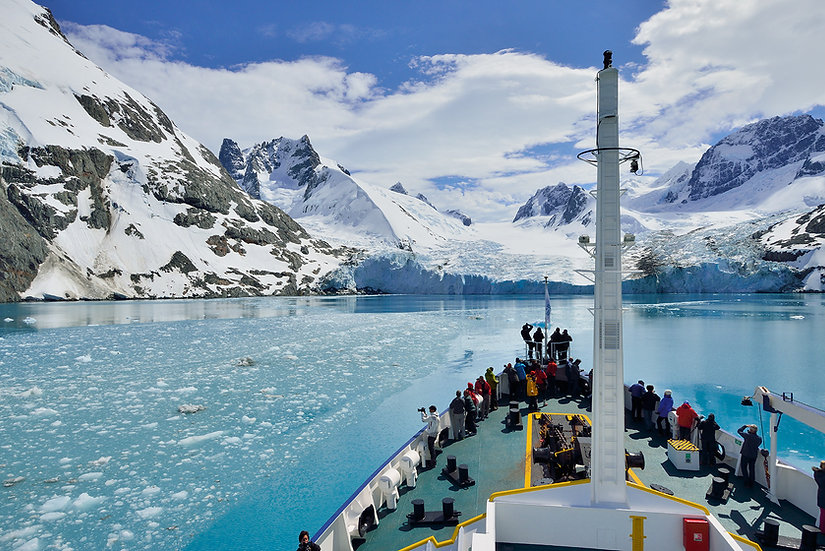 23天福克兰,南乔治亚,象岛,南极半岛,南极圈探险之旅