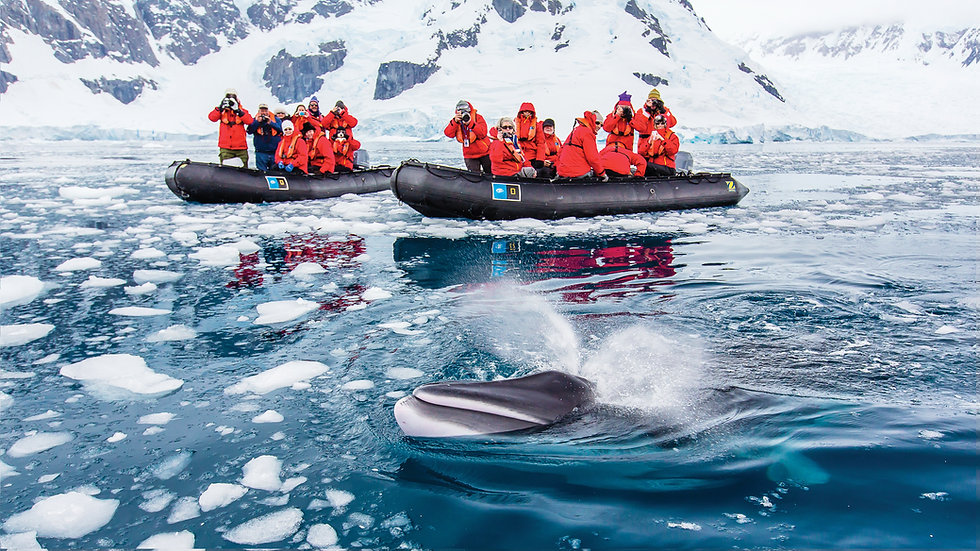 13 Nights Journey to Antarctica: The White Continent