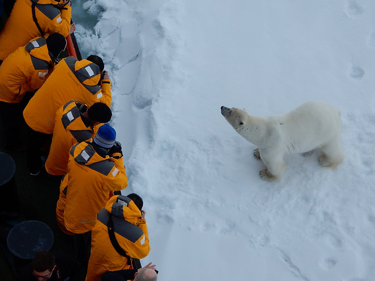 14天正北极90度北极点极顶探险