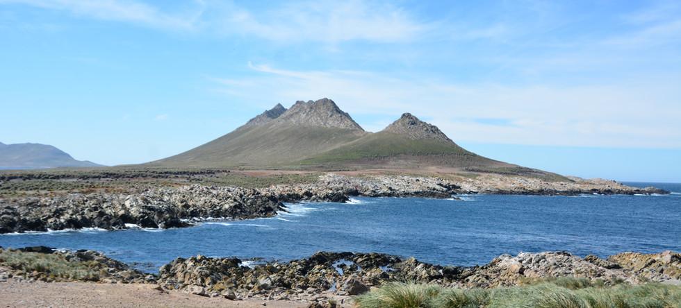 Steeple Jason Island