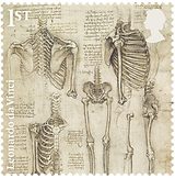 0 medical philately anatomy davinchy 1.p