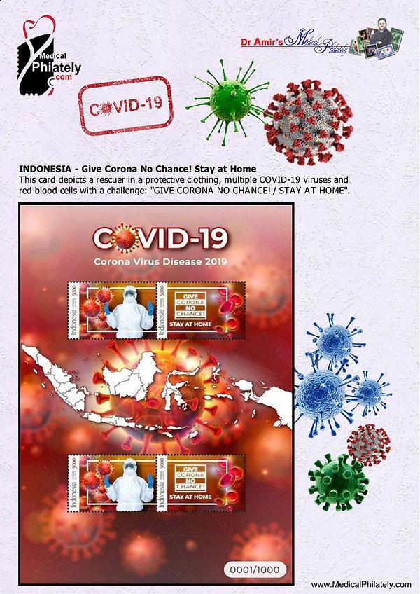 covid Indonesia 2 sheet_medical_philatel
