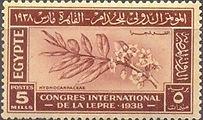 International-Leprosy-Congress---Branch-