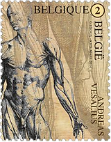 0 medical philately davenci 1 png.png