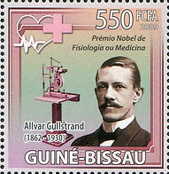 Allvar Gullstrand1.jpg