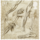 0 medical philately anatomy davinchy 3.p