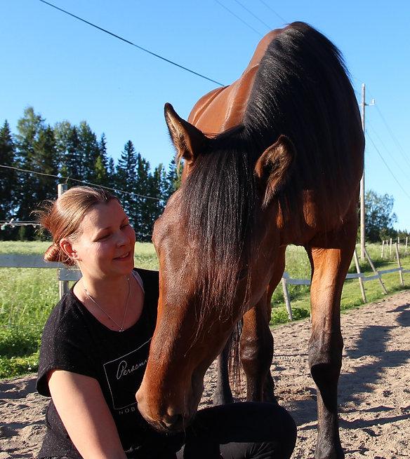 Ullan hevoset