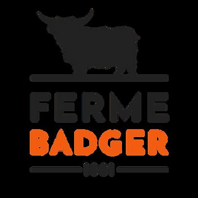 logo-badger-sans-fond-orange.png