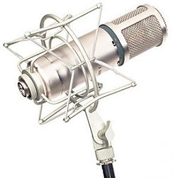 mic-290x300-2.jpg