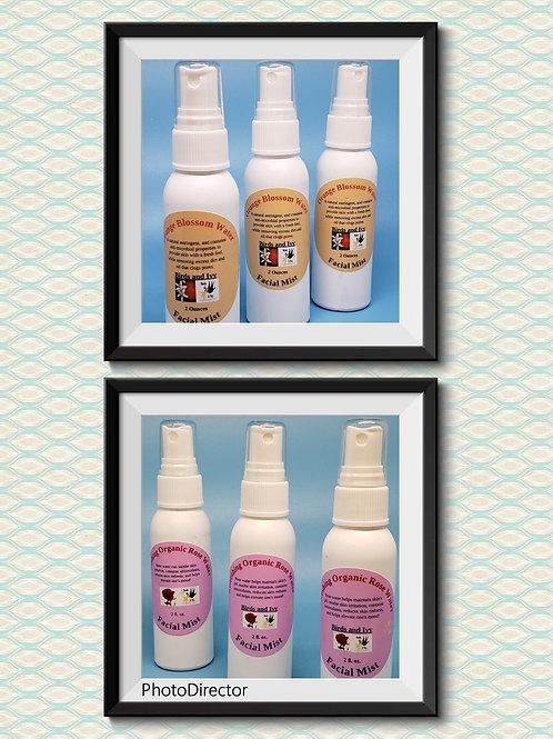 Finishing Spray/Facial Toner