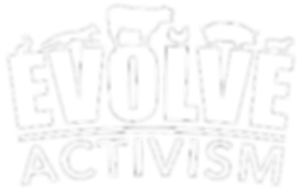 Evolve Activism Logo Stroke 6.png