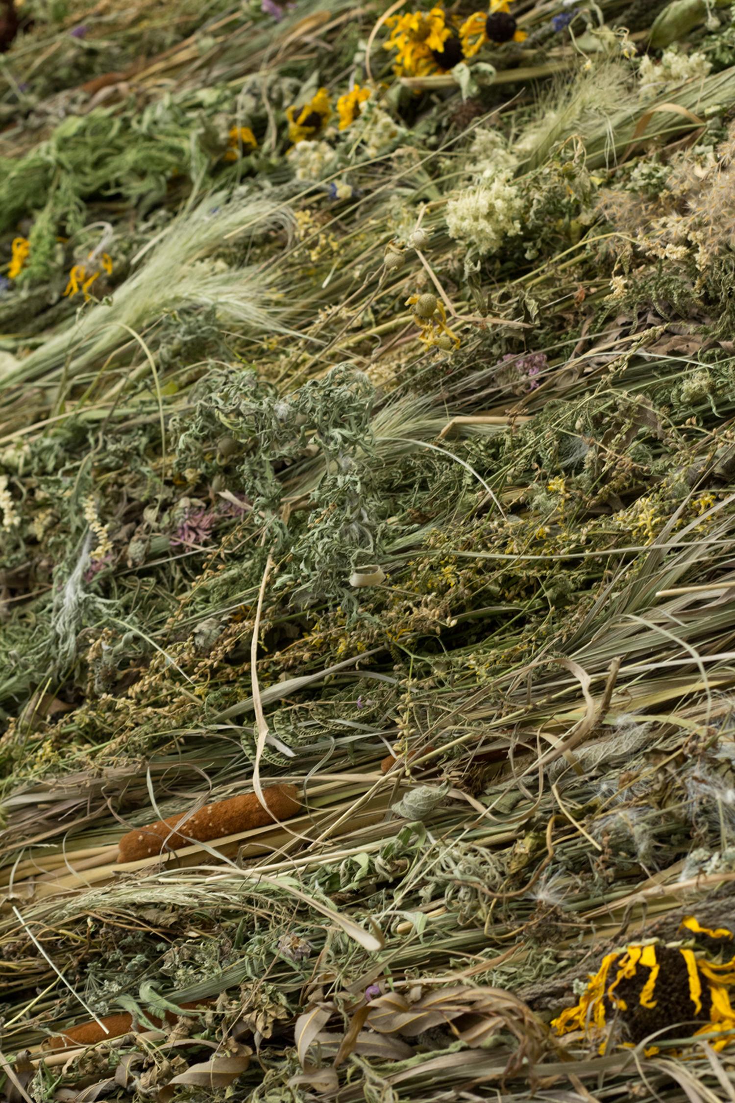 Prairie: Tapestry