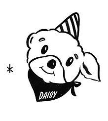 DP_Daisy.jpg