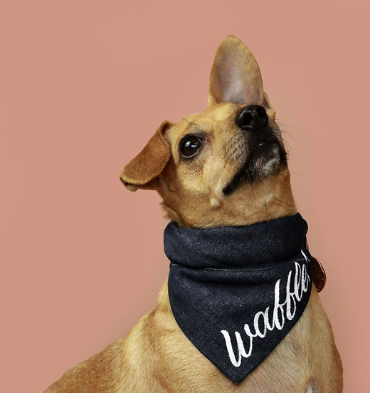 Dog Bandana  | Black Denim