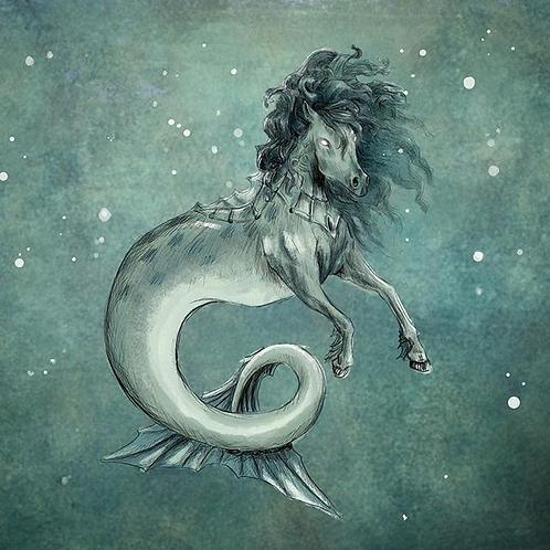 Varsei, Female Hippocampus