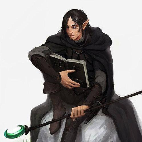 Rebosse, Male Dark Court Elf