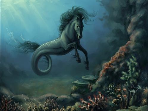 Mallie, Female Hippocampus